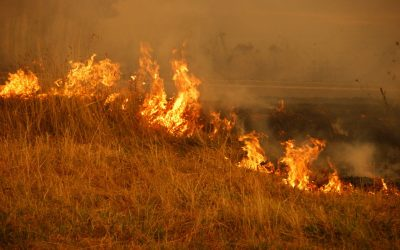 Your water supply in a bushfire