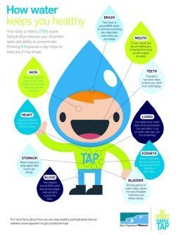 How water keeps you healthy (primary)