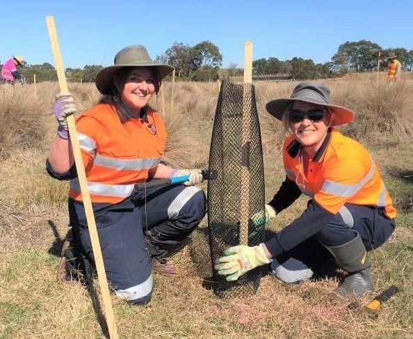 Applications invited for Round 2 of environmental grants