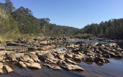 Seeking feedback on possible water restrictions