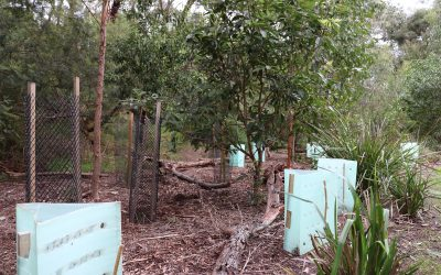 Applications invited for Round 8 of environmental grants