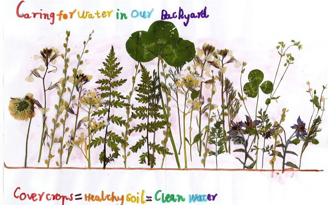 National Water Week poster competition winners are…
